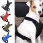 Cinto De Segurança Peitoral Para Cães + Adaptador Grátis