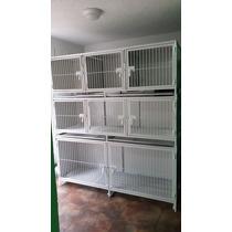 Modulo 8 Puertas Para Veterinaria Y Estetica Canina