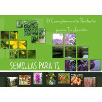 Semillas Pakete Kures Quinoa + Regaliz + Otras 19 Especies!!