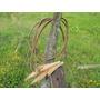 Antiguas Cuerdas De Cuero Trenzada Tranquera Corral Campo