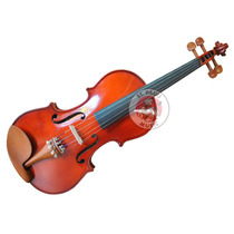 Violin Ancona Vg104 Macizo 4/4 Con Estuche Arco Resina Envio