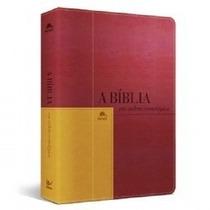 Bíblia Em Ordem Cronológica + Bíblia De Estudos Nvi Capa Dur