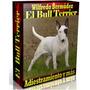 Libro Electrónico El Bull Terrier Adiestramiento Y Mas