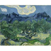 Lienzo Tela Vincent Van Gogh 1889 Impresionismo 50 X 63 Cm