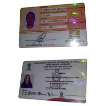 100 Hologramas Credenciales Pvc, Epson T50, L800 Tarjetas.