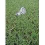 Semillas De Pasto Cynodon - Bermuda Hibrido Sahverde