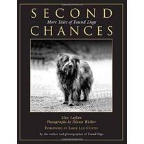 Las Segundas Oportunidades: Más Historias De Perros Encontra
