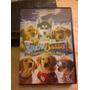 Dvd Snow Buddies-cachorros En La Nieve - $40- Orig. Usado