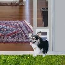 Puerta Modular Aluminio Blanca Chica Perro Gato Casa