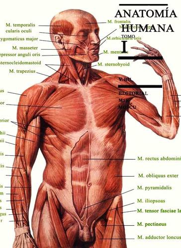 Anatomía Humana Tomo I: Aparato Locomotor Digital - $ 99.99 en ...