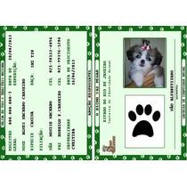 Frete Grátis - Rg - Carteira De Identidade Para Pets