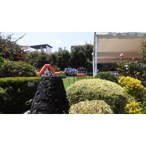 Jardín En Coyoacan Para Eventos Sociales