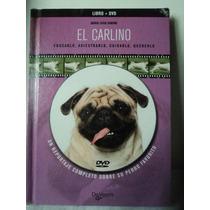El Carlino. Pug. Maria Simone. Libro + Dvd Cuidado De Vecchi