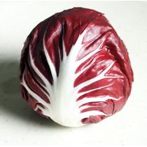 50 Semillas De Radicchio O Achicoria Roja Chicoria