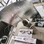 Kit Sodio 400w Completo 4.5 Amp! Proelec Indoor Gtia 1año St