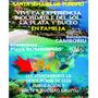 Viajes Excursiones Semana Turismo Brasil Mejor Precio Bus