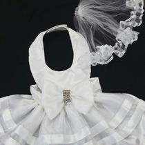 Roupinha De Cachorro Vestido De Noiva Com Véu