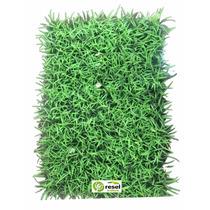 Follaje Plantas Muro Verde Artificial P7 60 X 40 Cm