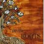Cd Divisi Roots Importado