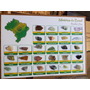 Coleção De Rochas E Minerais Do Brasil