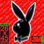 Calco Conejo Playboy Argentina, Resinado Dome