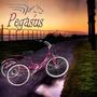 Triciclo Capacidades Especiales Pegasus Low Rider Cycles