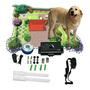 Collar Electrico Canino Perros-cerca Perimetral Entrega Inme