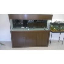 Aquario 150x40x50 Marinho Vidro