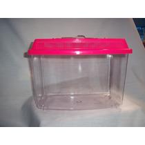 Mascotera Plastico Mini Panoramica Transparente