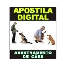 Como Adestrar Ensinar Cão Cachorro Apostila Digital