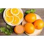 Naranja Ombligo Newhall Árbol Injertado 70cm A 1 M Frutales