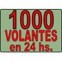 1000 Volantes / Folletos / Flyers En 10x15 Cm. / 24 Hs.!!!!