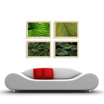 04 Quadros Com Madeira Natural Imagens De Plantas 45x30 Cada