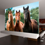 Fotomural Naturaleza Fmn10 375x250 Cms<br><strong class='ch-price reputation-tooltip-price'>$ 787.500</strong>