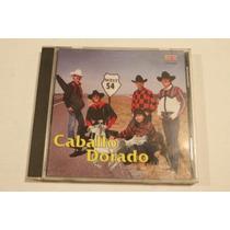 Caballo Dorado Payaso Del Rodeo
