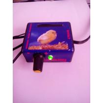 Kit Termostato E Temporizador 5 Produtos