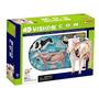 Modelo Anatomico 4d La Vaca Increible Importado Anatomia
