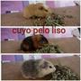 Cuyo Pelo Liso