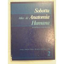 Atlas De Anatomia Humana - Sobotta - Vol 2 - 18ª Edição