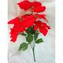 Flor Navidad Ramo De 5 Flores