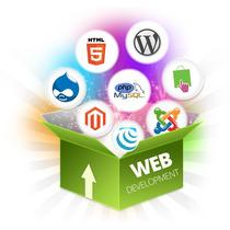 Páginas Web - Tiendas Virtuales - Plantillas Mercado Libre