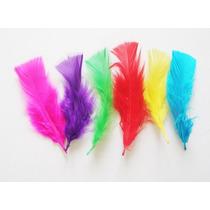 Plumas Artesanias Colores Surtidos 7 A 15 Cm Por 100 Plumas