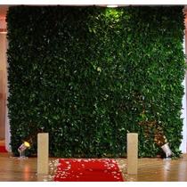 Muro Inglês- Muro Vegetal - Decoração Festas E Eventos