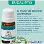 Aceite Esencial Eucalipto Swissjust