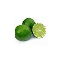 Limon Tahiti 80cm A1,2m Injertad Sin Semilla Para Caipiriña