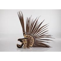 Penacho De Guerrero Aguila