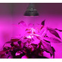 Lampara Led Cultivo 12w + Fertilizante Topcrop Crecim/flora