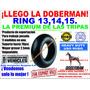 Ring 13 Ring De Carro Doberman Premium