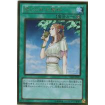 Yugioh * Forbidden Chalice (gs05-jp017) * Japonesa Yu Gi Oh!
