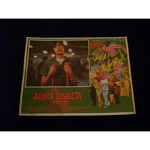 El Aguila Descalza Alfonso Arau Lobby Card Cartel Poster A